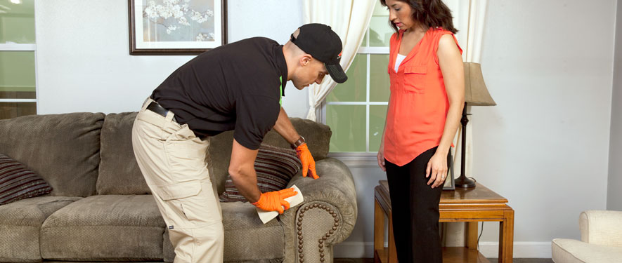 Bakersfield, CA carpet upholstery cleaning